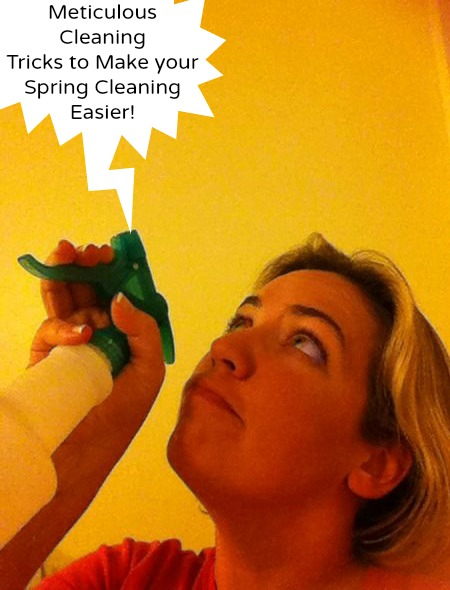 Meticulous Celaning tricks to make your spring cleaning easier!   Adventures in Mindful Living!