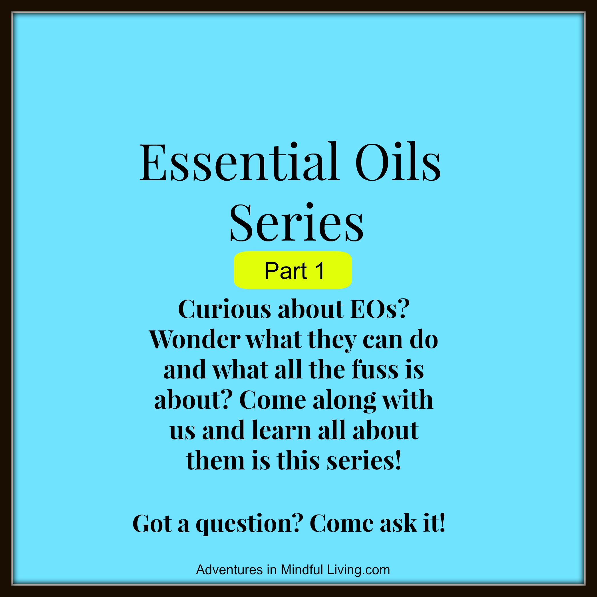 Essential Oils!  Have you ever wanted to learn about Essential Oils? Have you wondered what they really do and what is all the fuss about? Then come along with us and learn all about them in this series at Adventures in Mindful Living!