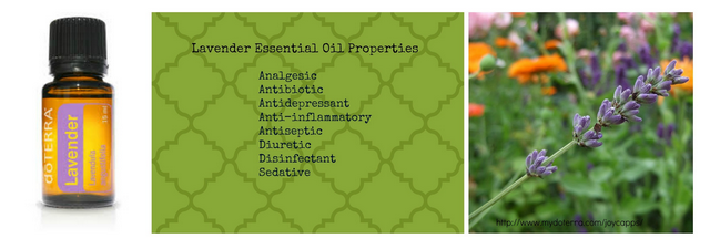 Essential Oils Part 1! Come and learn along with me all about Essential Oils in this series at Adventures in Mindful Living!