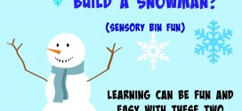 Do you want to Build a Snowman Learning can be fun and easy with these two sensory bin ideas and learning activity!