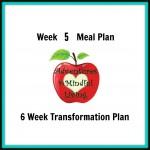 Week 5 Meal Plan (6 Week Transformation)
