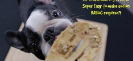 DIY Homemade Dog Treats! Super Easy to make and NO BAKING required!!