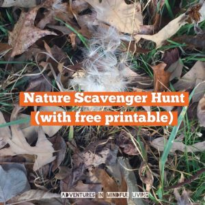 Nature Scavenger Hunt with FREE PRINTABLE - Are you looking for a fun way to get your kids outside and using their observation skills? Come check out this nature scavenger hunt free printable!